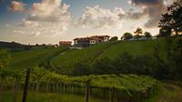 Laguardia - Rioja Alavesa: Cradle of Wine Tour from Bilbao