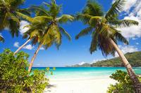 Beau Vallon Snorkeling in Seychelles