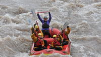 Canon City Half-Day Whitewater Rafting In Royal Gorge