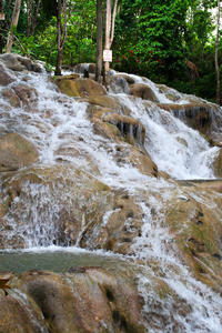 Private Day Trip to Dunn's River Falls from Montego Bay