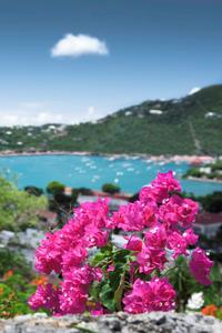 St Thomas Cultural and Historical Sightseeing Tour