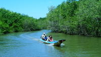 Can Gio Mangrove and Monkey Island Adventure Tour from Ho Chi Minh City