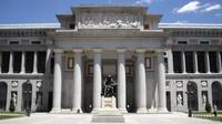 Madrid Guided Private Tour: Prado, Thyssen-Bornemisza or Reina Sofia Museum
