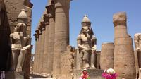 Private Guided Tour to East Bank Including Karnak and Luxor Temples