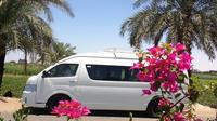 Private Vehicle and Driver for 1 Day in Luxor