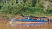 4-Day Amazon Jungle Tour at Tambopata Research Center