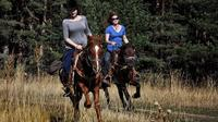 Teteven Horse Riding Experience from Sofia including Overnight Stay