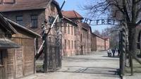 Excursión de día completo a Auschwitz y Birkenau desde Cracovia con traslado privado