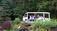 Glacier Gardens Rainforest Adventure in Juneau