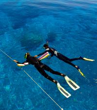 Great Barrier Reef Dive and Snorkel Cruise from Townsville or Magnetic Island