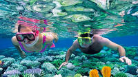 Isla Contoy Private Day Tour, from Cancun