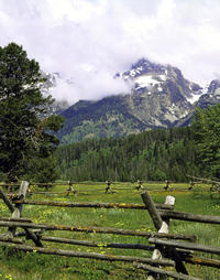 Grand Teton Park Self Guide Driving Tour from Jackson Hole