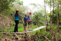 4 Line Jungle Zipline Tour On Maui