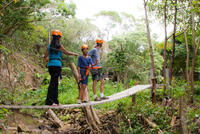 Jungle Zipline In Maui