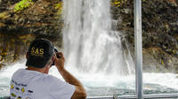 Ultimate Hawaii Waterfalls combo Dolphin Boat Tour
