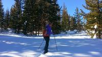 Scenic Snowshoeing Full Day