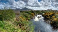 Excursión de un día a Connemara y Galway desde Dublín
