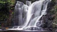 Ring of Kerry Day Tour from Limerick Including Torc Waterfall