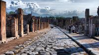 4-Hour Excursion to Pompeii from Sorrento