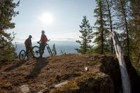 Whistler Half-Day Mountain Bike Tour