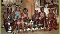 Zulu Cultural Tour Including Shakaland from Durban