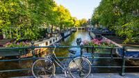 Private Amsterdam Walking Tour Including Refreshments
