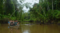 9-Day or 11-Day Guyana Burro Burro River Trip