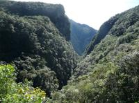 Ilha do Mel State Park Day Tour from Curitiba