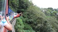 Rail Tour from Curitiba to Morretes