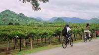 2-Day Tour Cycling Khao Yai Wine Trails from Bangkok