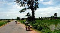4-Day Bike Tour of Cambodia's Pepper Route from Phnom Penh