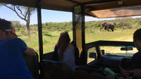 3-Day Tour of Kruger National Park from Skukuza Airport