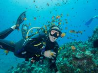 Maui Scuba Diving Introductory Lesson