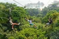 Mega Adventure Park Zipline on Sentosa Island