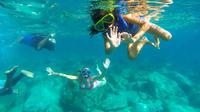 Private Power Catamaran Snorkel and Beach Experience