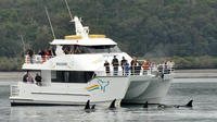 Morning or Afternoon Whale Watching Tour on the MV Whalesong