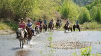 2-Hour Horseback Riding Experience in Marmaris