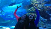 Antalya Aquarium with a Short City Tour and Visit to Lara Waterfall
