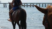 Horseback riding in Bodrum