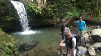 El Yunque National Forest Tour from Fajardo