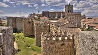 Business Car transfer Avila to Madrid City or Madrid Adolfo Suarez Airport MAD centre