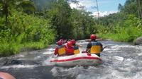 Bali Adventure Day Tour: Cycling, Rafting and Volcanic Spa Experience