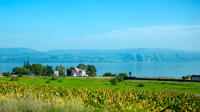 Small Group Tour to Biblical Highlights of the Galilee from Jerusalem