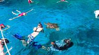 iles-similan-sortie-snorkeling