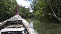 Krabi Cultural River Cruise Including Mangrove Forest, Khao Kanab Nam Cave and Koh Klang Community