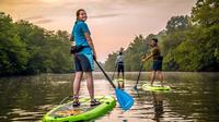 Guided Stand Up Paddle Tour in Asheville