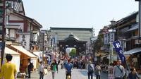 Full-Day Tour of Snow Monkeys, Zenko-ji Temple and Sake in Nagano