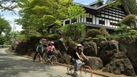 Snow Monkey and Cycling Day Tour in Nagano