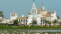 Donana National Park and Village of El Rocio Guided Day Tour from Seville