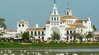 Donana National Park and Village of El Rocio Tour from Seville